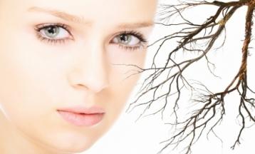 Seprűvéna, hajszálér kezelés